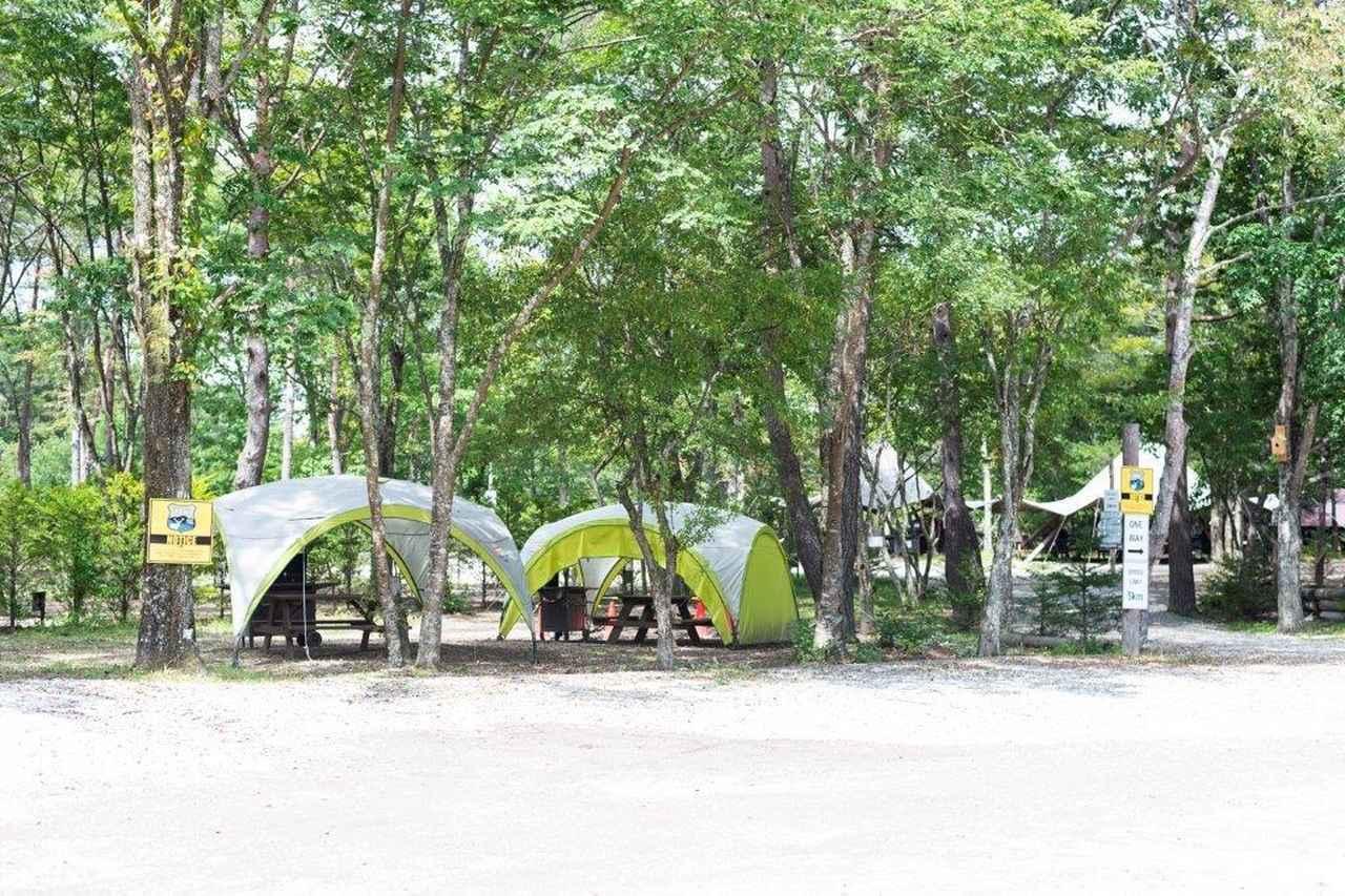 画像7: 軽井沢で1泊2日の常設テント泊!