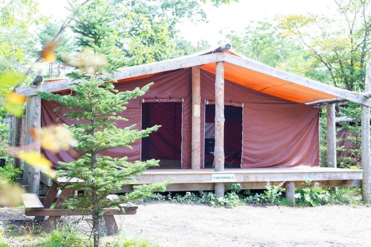 画像8: 軽井沢で1泊2日の常設テント泊!