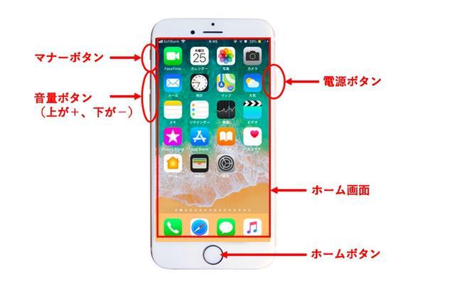 画像: 〈iPhone 7、iPhone 8〉