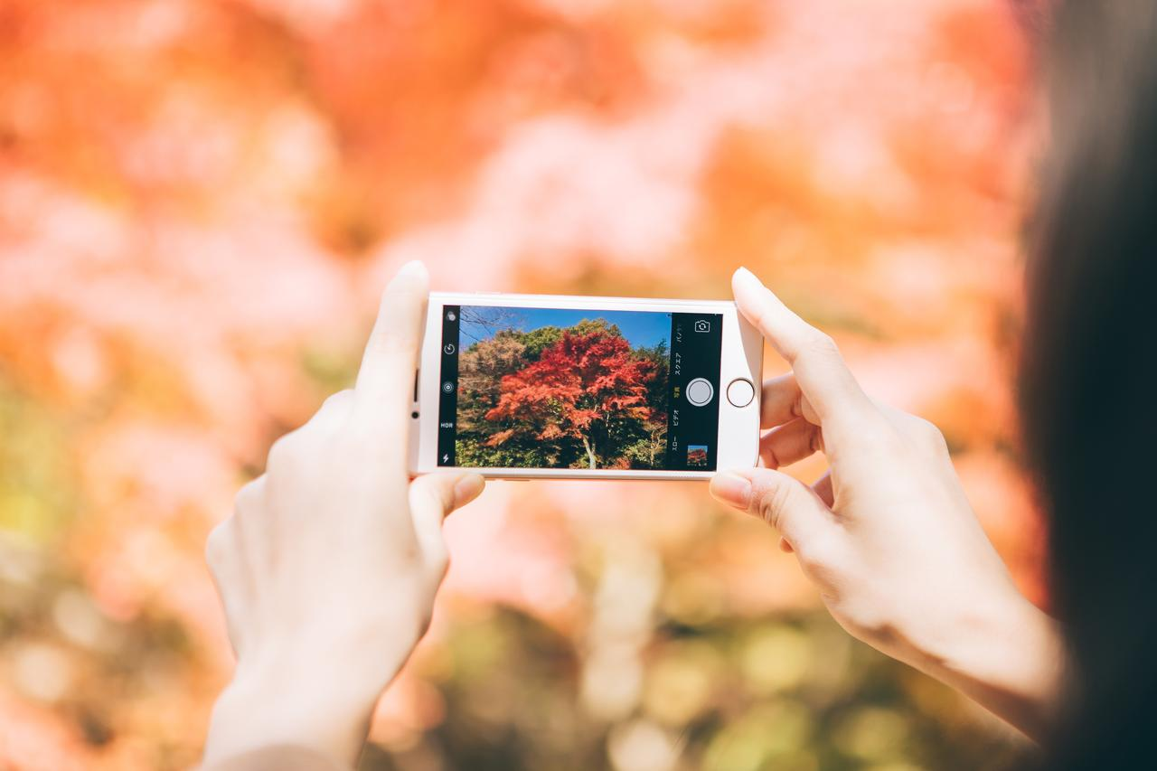 画像: スマートフォンで写真を楽しもう!