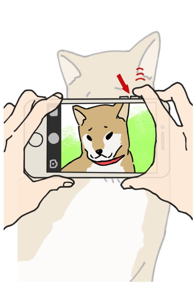 画像: 音量ボタンのある方を上側にして、音量ボタンのどちらかを押すとシャッターが切れます。