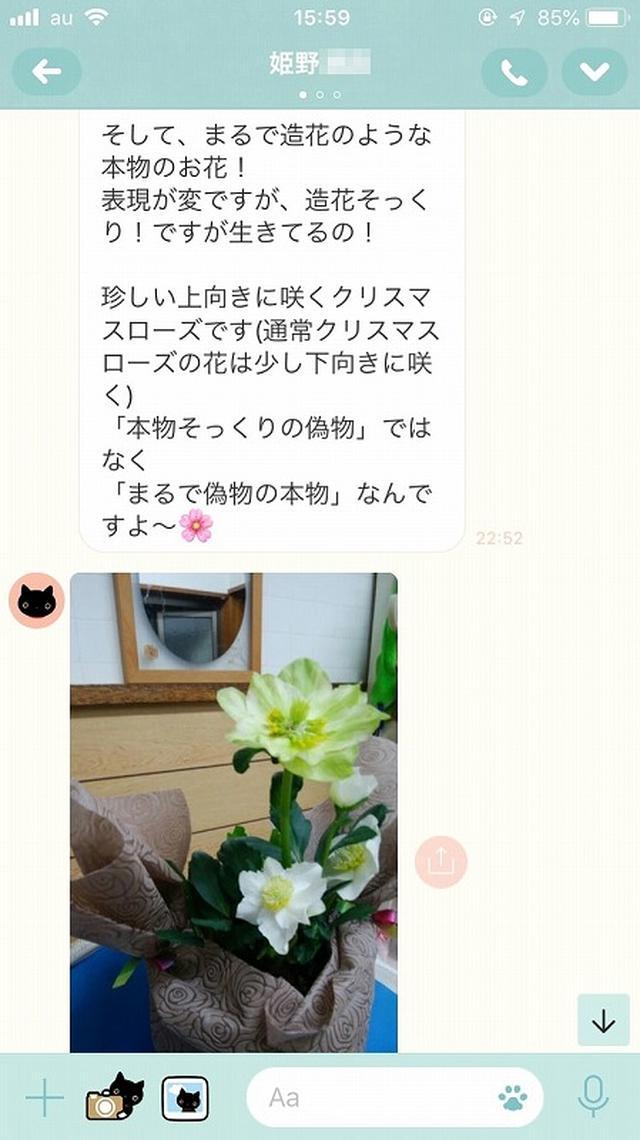 画像3: お母さんに「ありがとう」とLINEしてみた。姫野桂