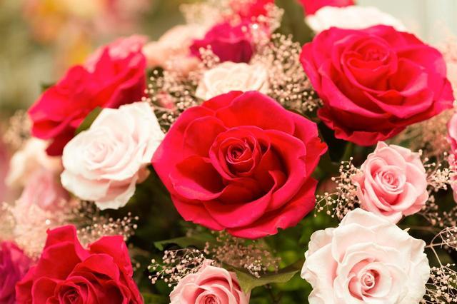 画像: お母さんに聞いた!還暦祝いにプレゼントされるならどんな種類の花がいい?