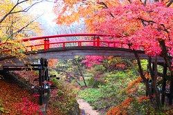 画像: 河鹿橋