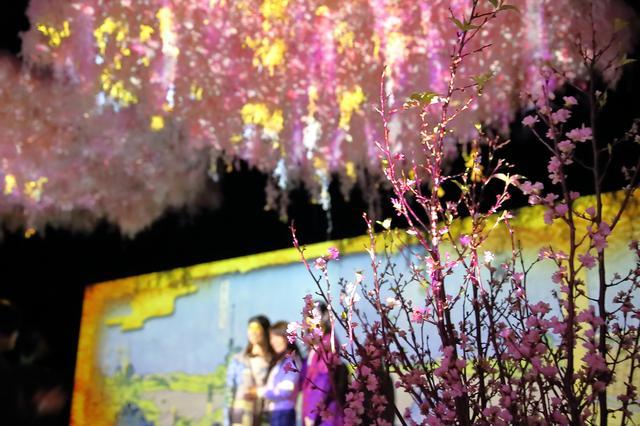 画像1: 大桜彩