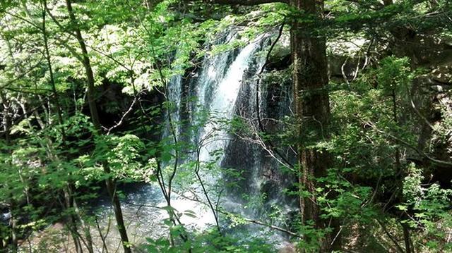 画像: 乙女の滝