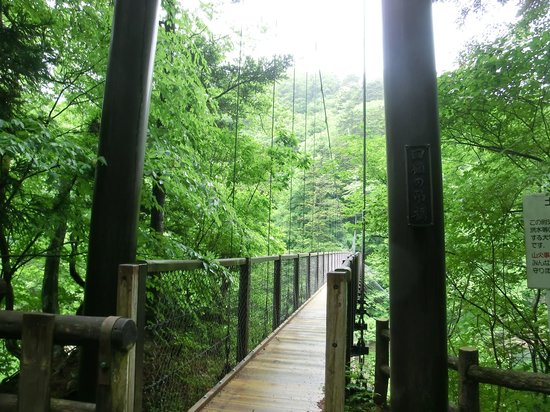 画像: 回顧の吊橋