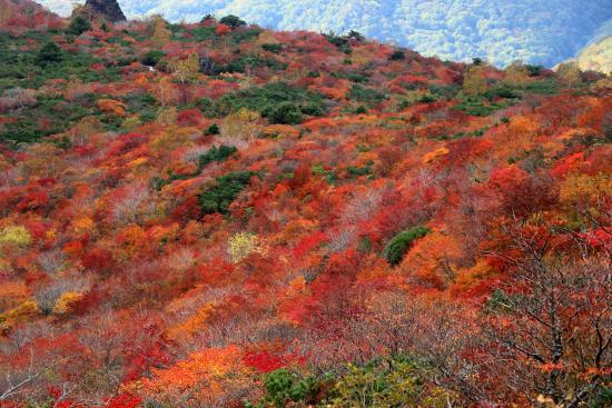 画像: 茶臼岳