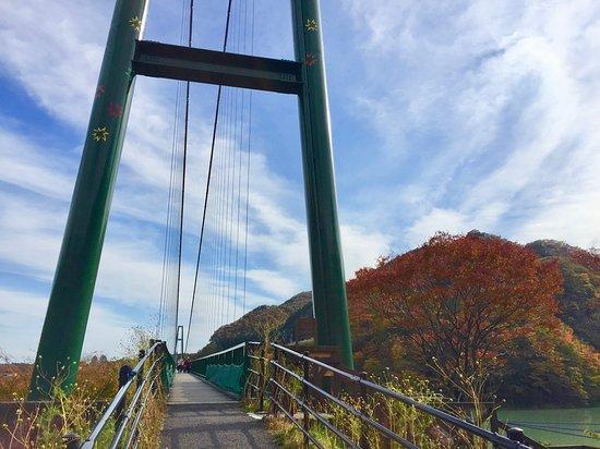 画像: もみじ谷大吊橋