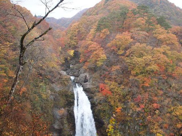 画像: 秋保大滝