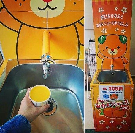画像: えひめ愛顔(えがお)の観光物産館
