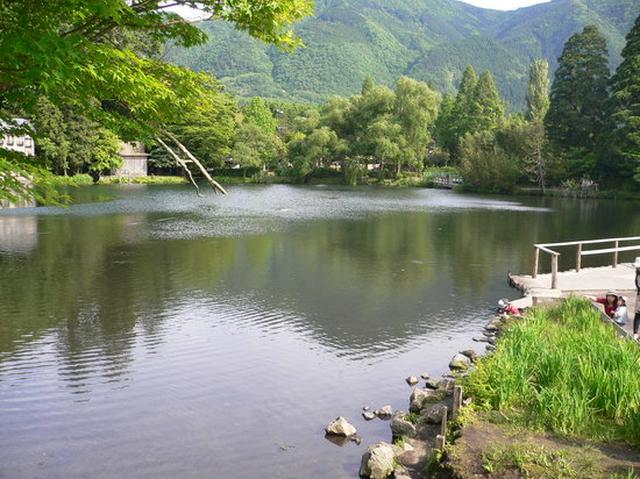 画像: 金鱗湖