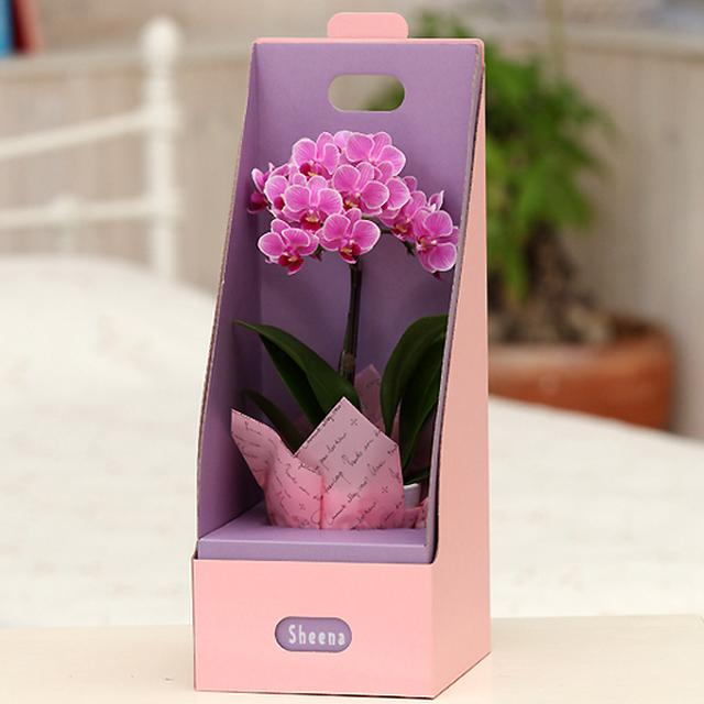 画像2: お花の詳細 │ 花の宅配ギフトならフラワーギフトの「フラワーファーム」