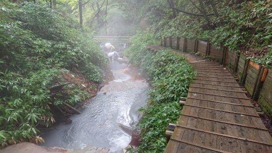 画像: 大湯沼川の天然足湯