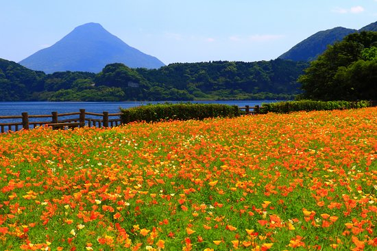 画像: 池田湖