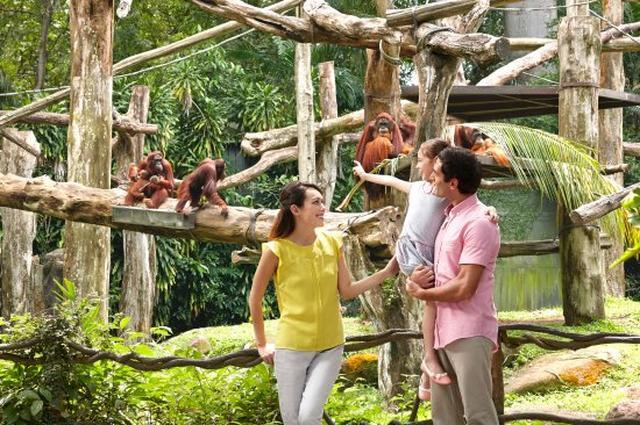 画像: シンガポール動物園