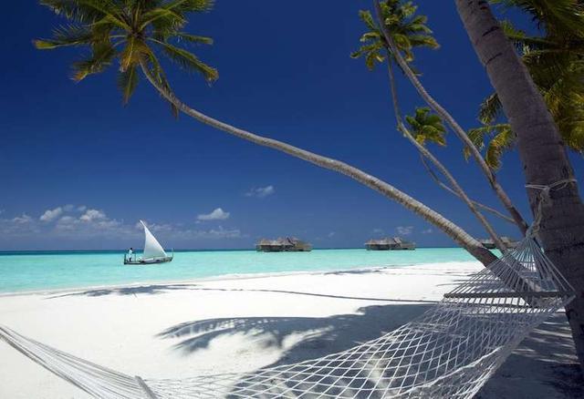 画像: ギリ ランカンフシ モルディブ (Gili Lankanfushi Maldives)
