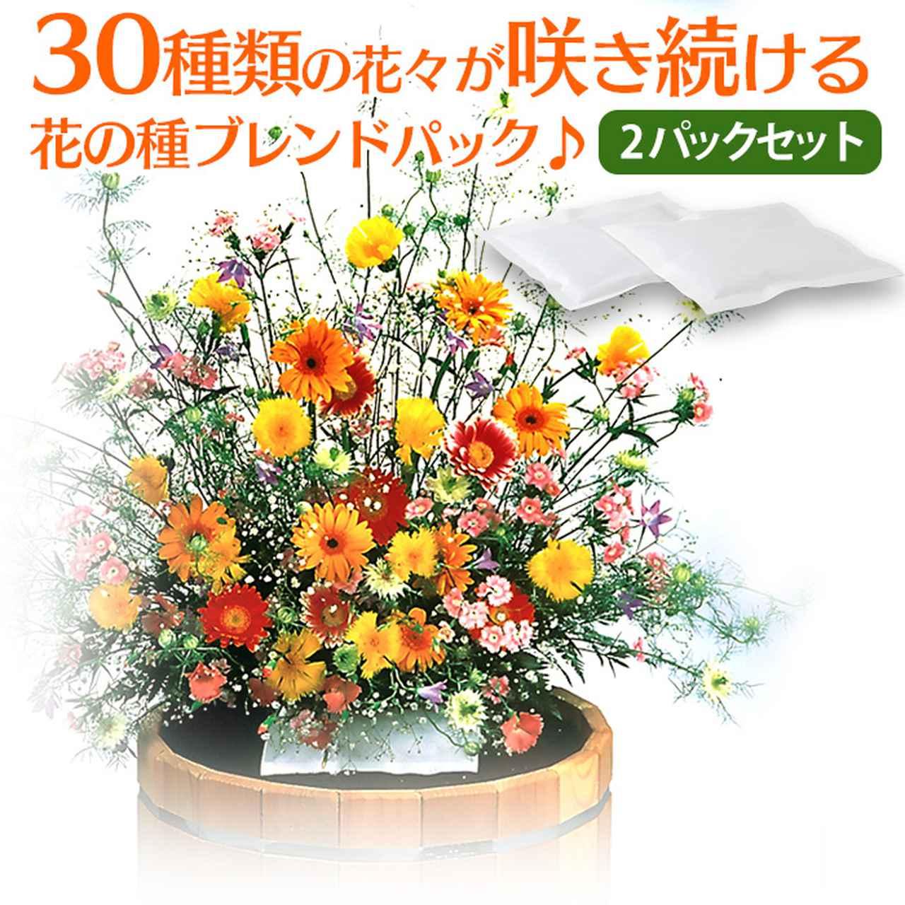 画像: 花の種ブレンドパック
