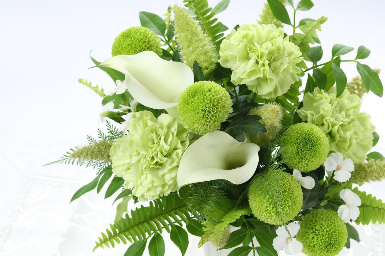 画像: 66歳を祝う【緑寿】おすすめのプレゼント男女別6選
