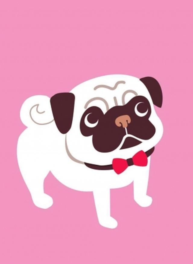 画像: 愛犬と通える高齢者デイサービス「わおん」