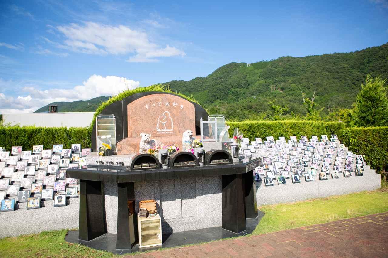 画像: 霊園ではペットのお墓だけでなく、飼い主とペットが一緒に入れるお墓も提供している