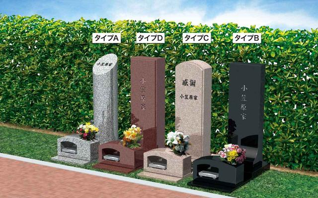 画像: 樹木墓(じゅもくぼ)タイプ別形状