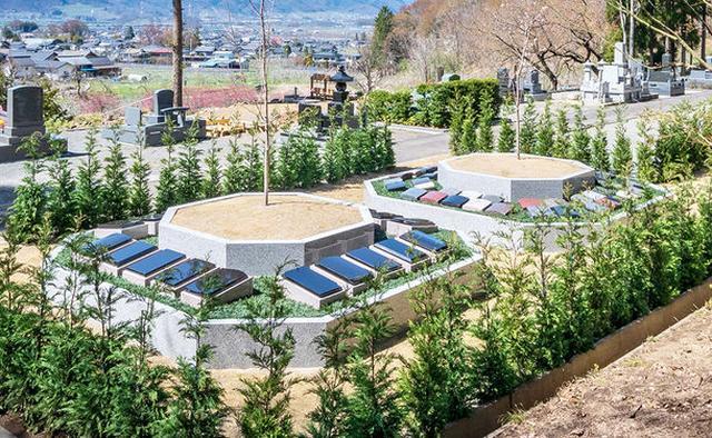 画像: おぶせさくら樹木葬浄苑1