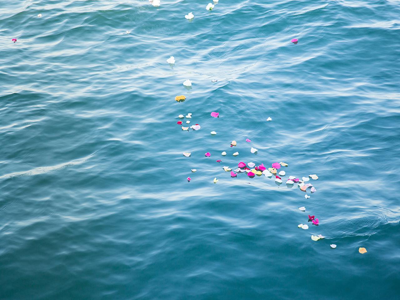 画像: お骨とともに、色とりどりの花びらを海へ。