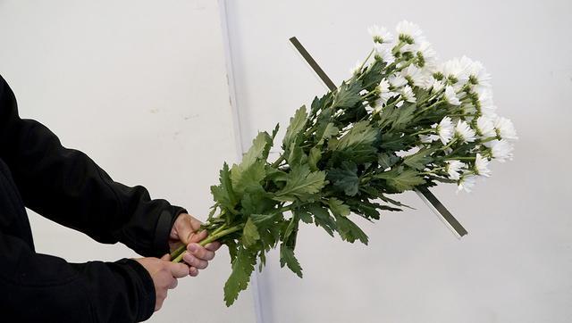 画像: 花束のサイズを示す、十字架ガイド