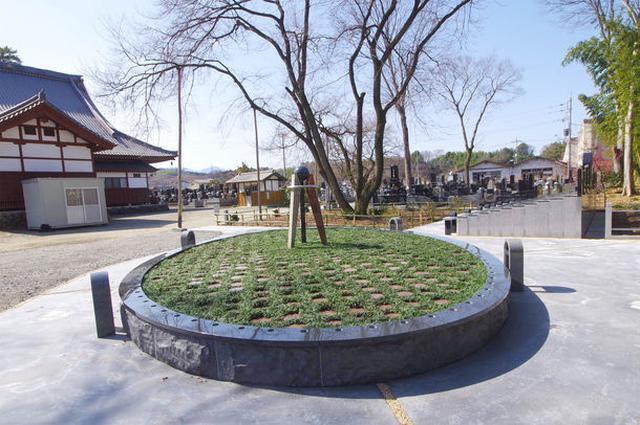画像: 樹木葬墓