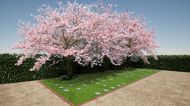 画像: 海洋散骨と樹木葬を組み合わせた「海と桜のメモリアル樹木葬」、兵庫県にて開業/株式会社 海と桜のメモリアル