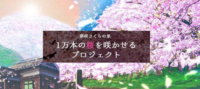 画像: 夢咲さくらの里「1万本の桜を咲かせるプロジェクト」