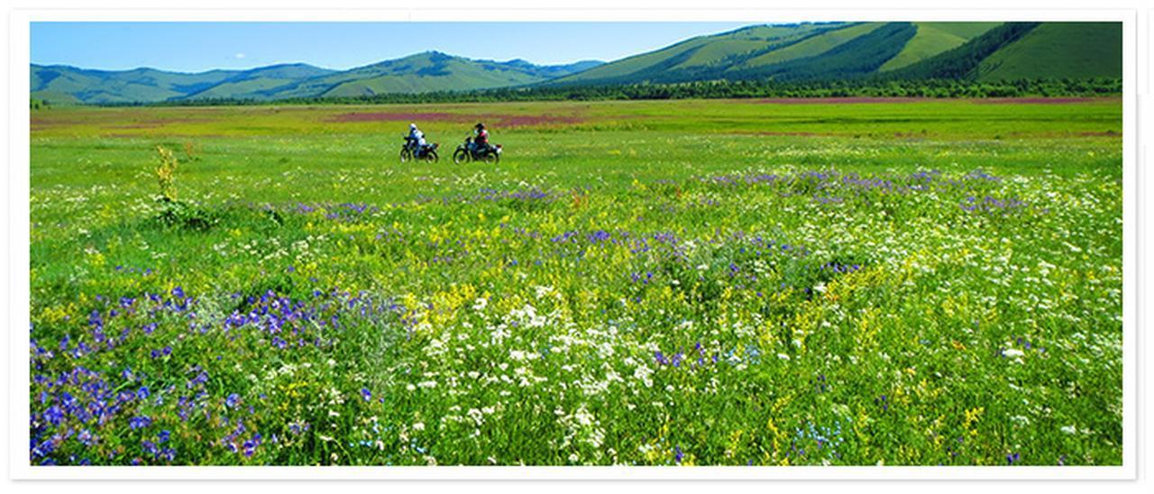 画像: 松下時子さんと旅する夏のモンゴルツアー
