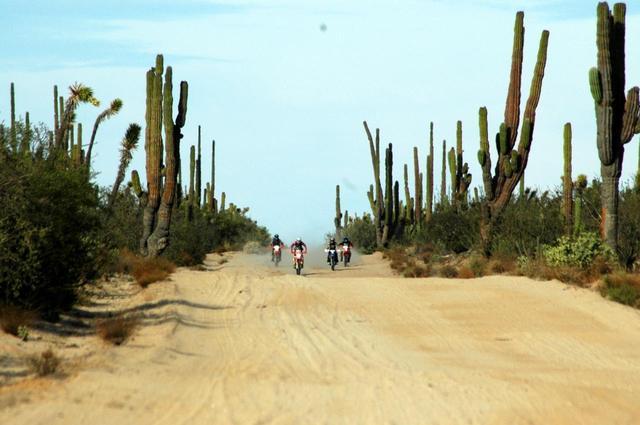 画像: 風魔プラス1ツーリング メキシコ バハ・カリフォルニア半島縦断オフロード7日間