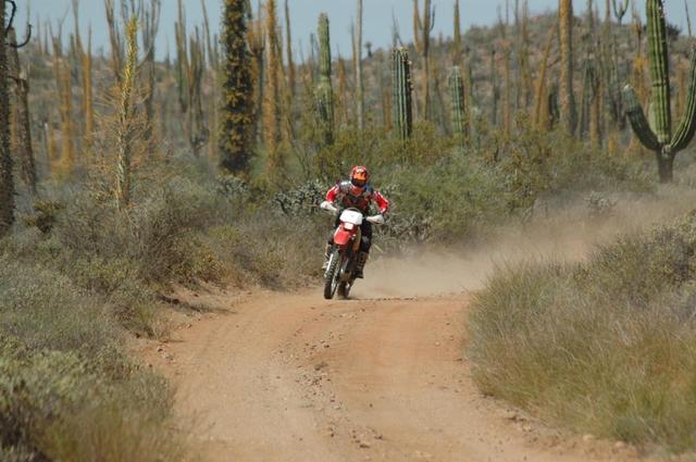 画像1: 風魔プラス1ツーリング メキシコ バハ・カリフォルニア半島縦断オフロード6日間