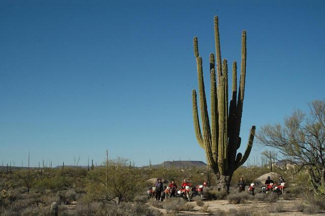 画像: 日程・予算で選べる半島縦断コース or ループコース