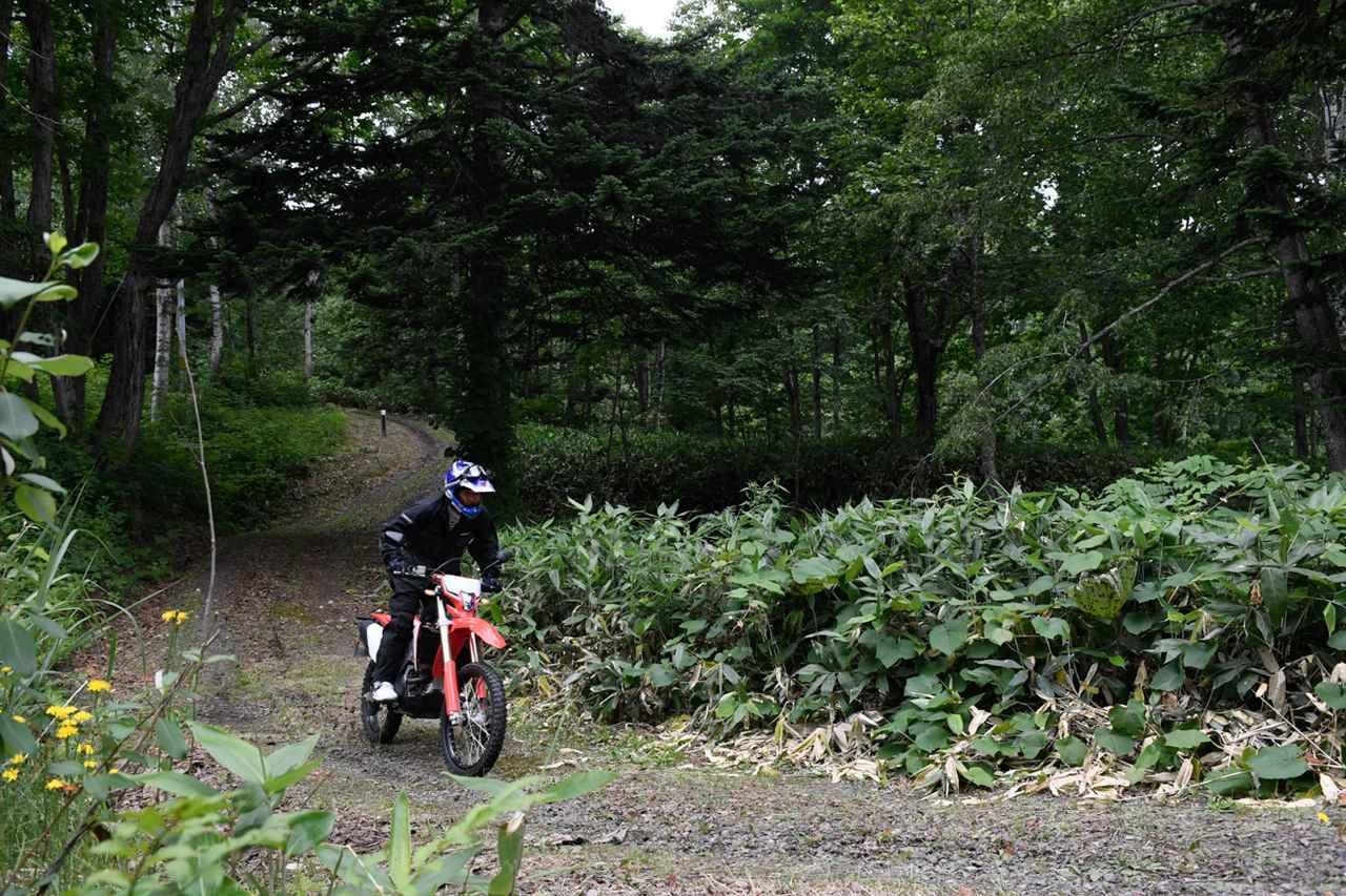 画像1: 低〜中速域が扱いやすい。林道ではほぼ満点のCRF450L