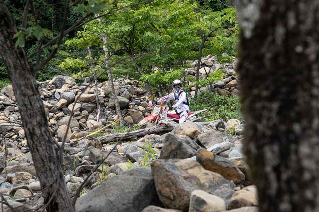 画像3: これぞHIDAKA ROCKSの醍醐味、ヘアスクランブル