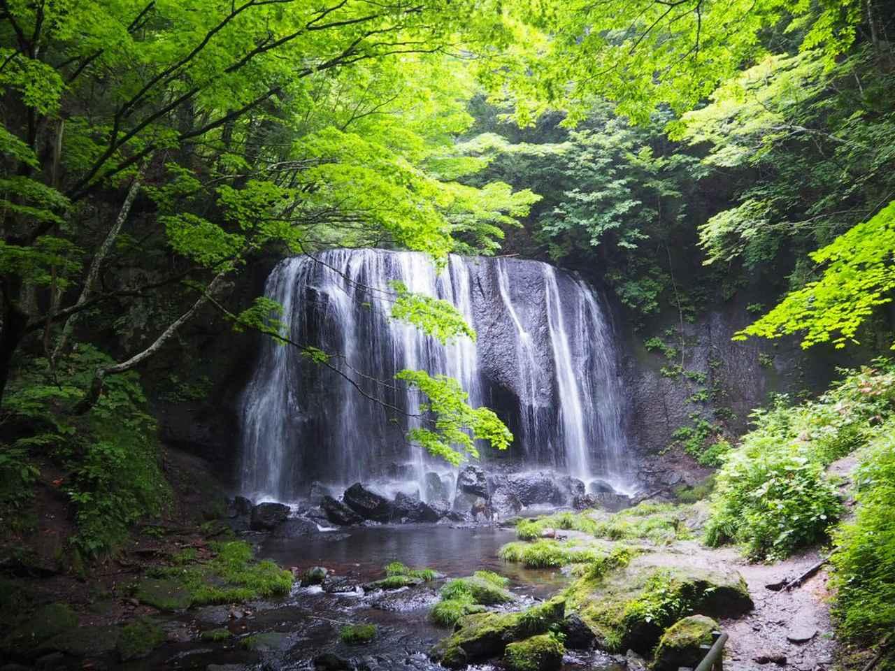 画像: 3日目 磐梯山の景色を楽しみながら、チーズナッツパークへ