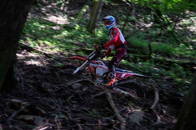 画像7: モトクロスコースから林間コースまで幅広く楽しめる