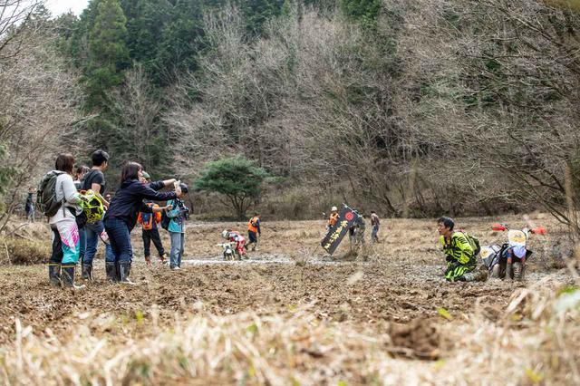 画像2: 注目! 奈良トラ2020が今年もSNSで話題沸騰