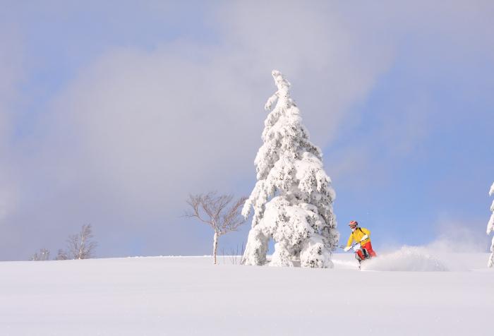 画像: HOKKAIDO SNOW BIKE EXPERIENCE