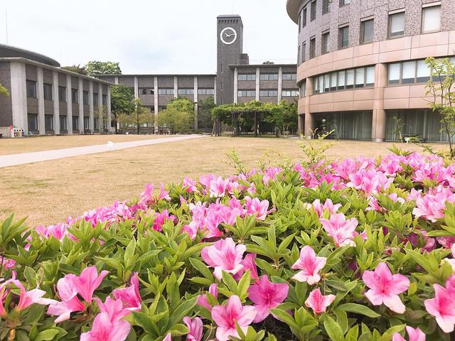 画像: 立命館大学 邦楽部(@ritshou)さん | Twitter