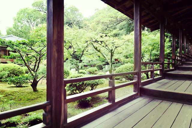 画像: 旧嵯峨御所 大本山 大覚寺