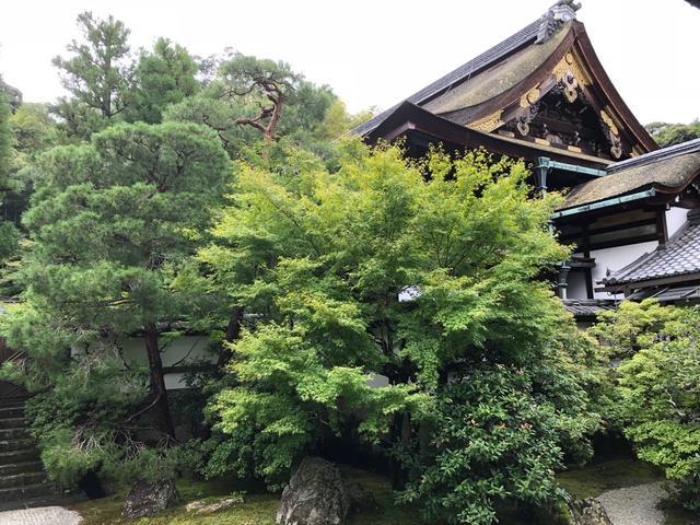 画像: 奥に見えるのが舎利殿です。10月7日午後2時から、こちらで須磨琴の奉納コンサートを行います。