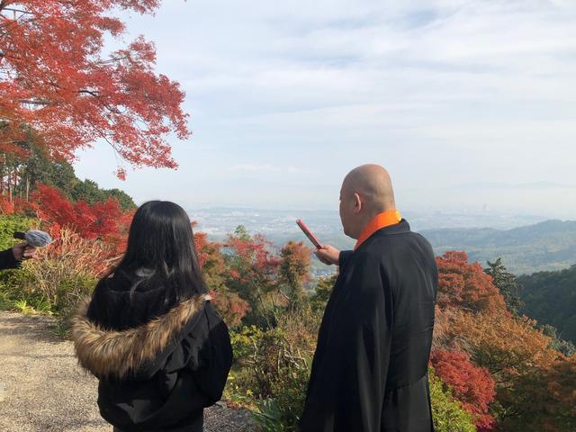 画像: 京都の街並みが広がります。
