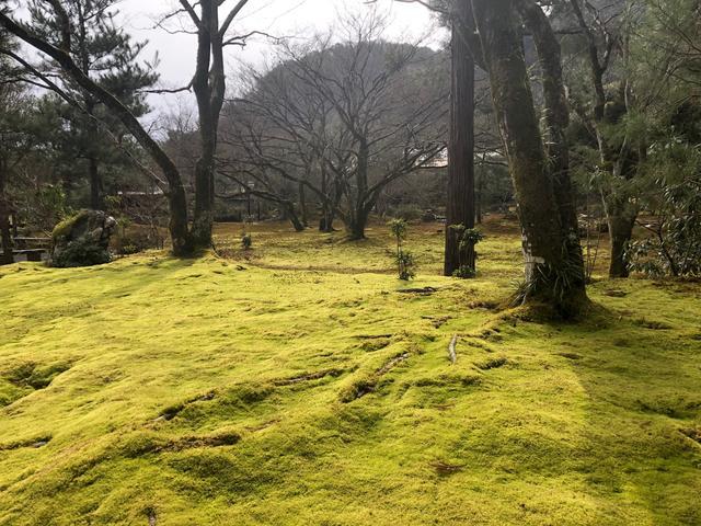 画像: 嵐山の景観を匠に取り入れた借景回遊式庭園です。