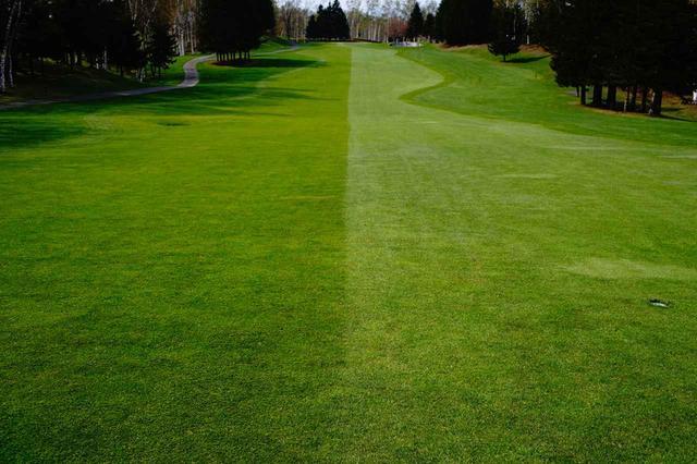 画像: 逆目(左)と順目(右)がくっきり!順目に打てればラン+10㍎