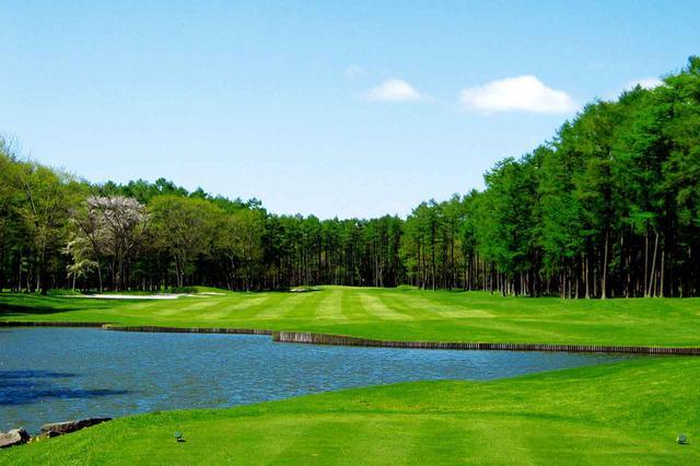 画像: コース名のとおり、池が綺麗な11番パー4(441Y)。真っすぐだが、左のバンカーはノーチャンス