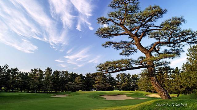 画像: 古賀ゴルフ・クラブ|Koga Golf Club